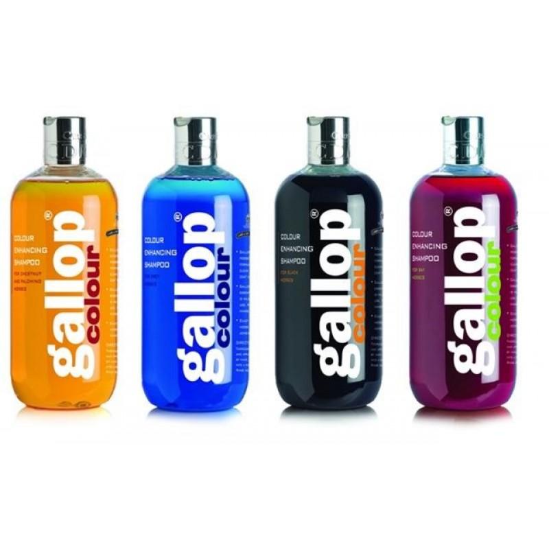 Carr & Day & Martin Gallop Color Enhancing Shampoo