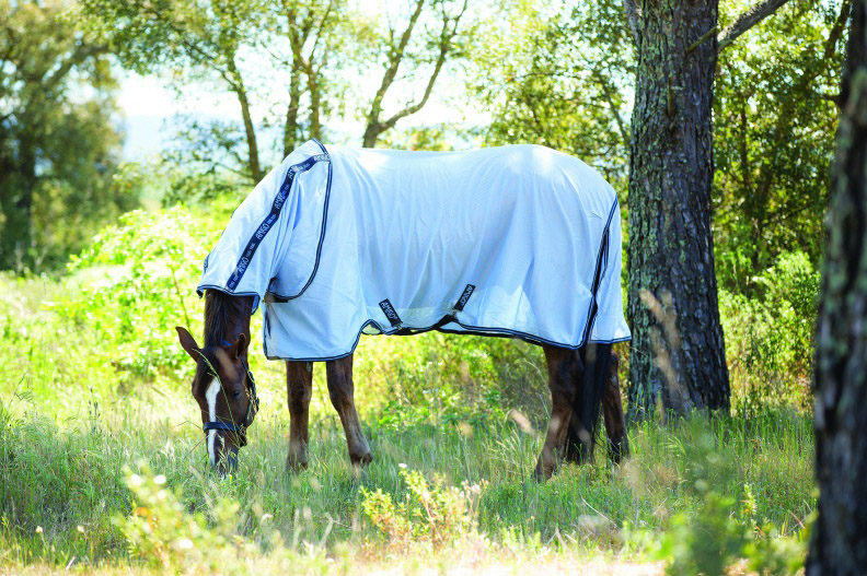 Amigo Bug Rug Fly Sheet pony