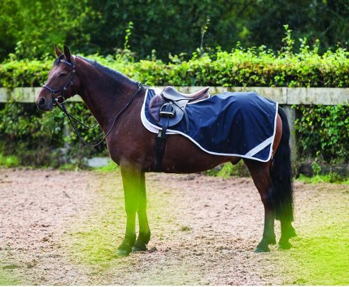 Amigo Competition Sheet pony