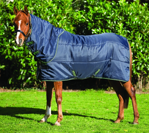 Amigo Pony Insulator Plus  Stable Blanket