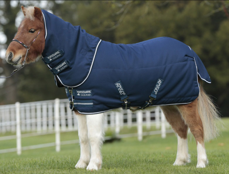 Petite Plus Stable Blanket for miniature  horses