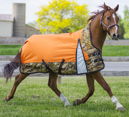 Candian Horsewear Camoflage