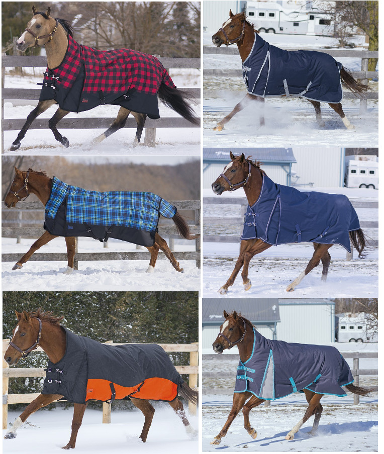 Canadian Horsewear 2017 Collection