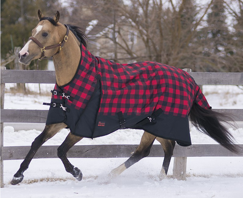 Canadian Horsewear Company Rainsheet, Insulated Rainsheet and Winter Turnout Blanket.
