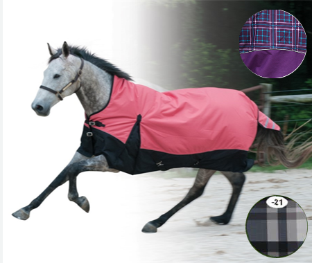 Century Ultra 1200 D High Neck Winter Turnout Blanket