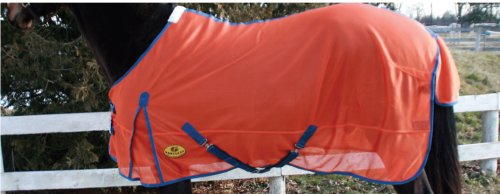 Goliath Safety/Horse Fly sheet