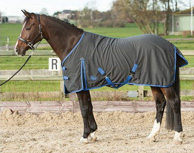 Harry's Horse Honeycomb Cotton Summer Sheet
