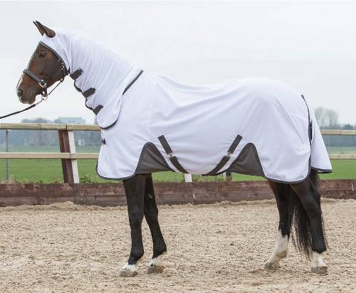 Harrys Horse Luxury Flysheet with Neck