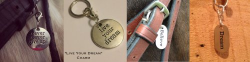 My Barn Child bridle charms; never give up, live your dream, believe, dream