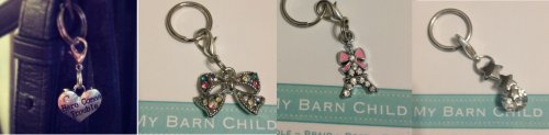 my barn child bridle charms; Here Comes Trouble, Aurora Bow, Paris Amour and Shooting Star