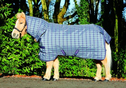 Rhino Pony All in One