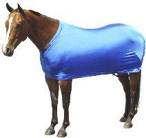 Sleazy sleepware Stretch Sheet