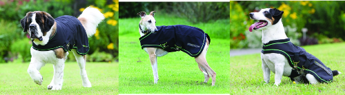 Sportz Vibe Dog Blanket