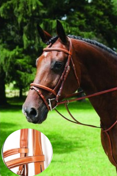 Vespucci Fancy Raised Jump Bridle with Flash