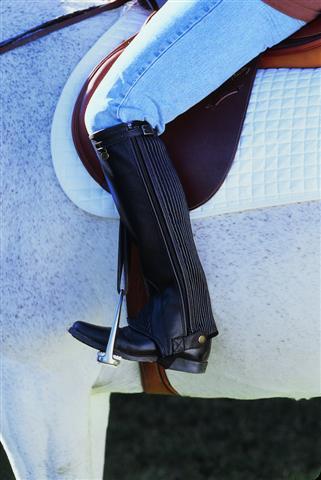 Cavalier Leather Stretch Rib Half Chap