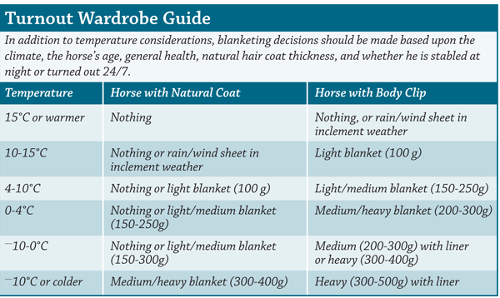 Horse turnout guide