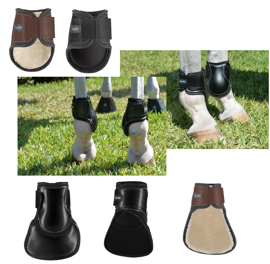Young Horse Hind Boot with or without the Extended Liner